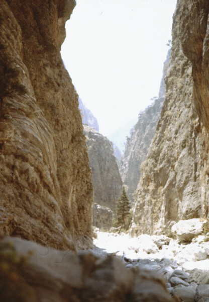 PicturesKJ/for-1977-89_Samaria.jpg